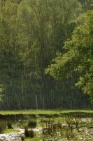 small steps to summer - rain III by Lk-Photography