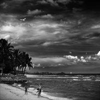 The family and a kite by Menoevil