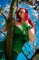 between the blossoms by idromy