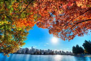 Vancouver and Fall by alierturk