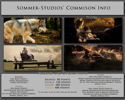 Commission Info by Sommer-Studios