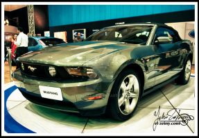 FORMULA 2011 Mustang by Yehiazz