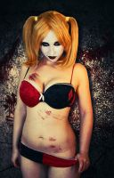 Pin up Harley 3 by Stephanie-van-Rijn