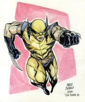 WOLVERINE watercolor by mdavidct