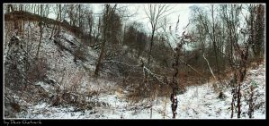 In the Ravine. by DenChetto