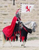 Parade in Carcassonne 1 by chavi-dragon