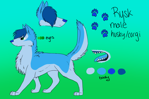 *OUTDATED* Rysk the Husky/Corgi by CursedFire