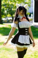Kana's Necomimi Maid Cosplay 06 by darkagesun