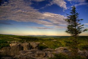Dolly Sods IV by Logicalx