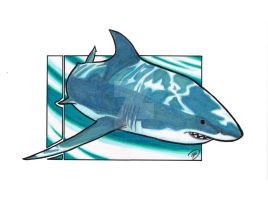 Sharkweek Sketch Jam2012 G.White shark by innerpeace1979