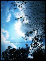 bright afternoon sky by nobiprajuritketiga