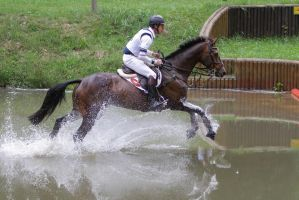 3DE Cross Country Water Obstacle Series X/20 by LuDa-Stock