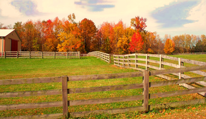 Beyond The Fence 3 by wildwanderingirl