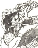Spiderman B and W by Anothen