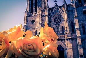 San Fernando Cathedral - San Antonio, TX Feb. 2013 by jopat73