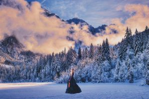 Sounds Of Winter V. 2 w/o wings by FQPhotography