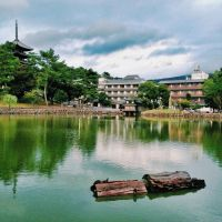 Japan Day 1 - Nara - Sarusawa-Ike Pond by arhcamt