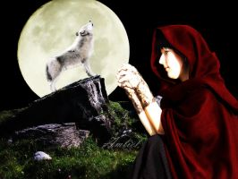 My Lover what have you become? (Big Bad Wolf) by Amliel