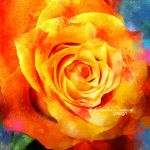 Colors of a New Dawn by OM--Shanti--OM