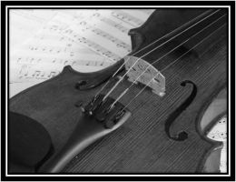 My Violin: Black and White by KataQueen