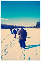 A walk on the lake by edhall
