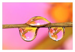 .: Fabolous droplets:. I by Katosu