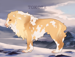 Cochise 14899 by TotemSpirit