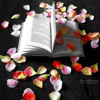 Petals Of Book by EmilieDurand