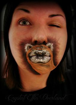 Ewok Mouth-paint by CrystalEffinOverland