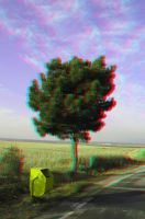 Lone tree anaglyph by mrkane27