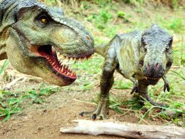 T-REX BUST and T-REX 1/18 galileo hernandez by MANUSAURIO