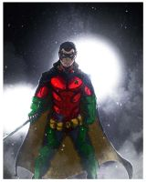 Robin (Enhanced) by Akthar