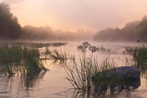 One wet misty morning by Mentos18