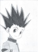 Gon Freecs by blackandawesome
