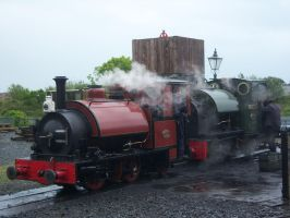 Talyllyn - Corris 3 and 4 by rh281285