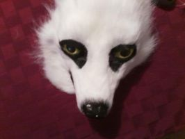 mask furred (top view) by DragonGames