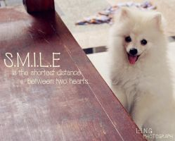 Smile by Ling-ling-Lim