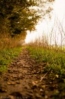 Narrow path by BlackChapters