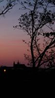 Sunset over Prague Castle by hikaripaki