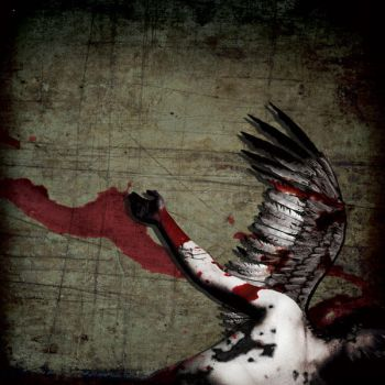 Fallen_ cd cover by suicide777bomber