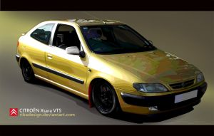 Citroen Xsara VTS vector style by RibaDesign