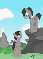 Discord and 11th Doctor Whooves by princessAdelaide
