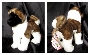 Douglas Medium Floppy Dogs - Kita Akita by The-Toy-Chest