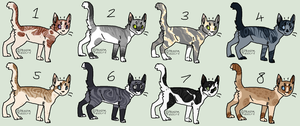MYSTERY ADOPTABLES || Batch Four || REVEALED by rainwolfeh