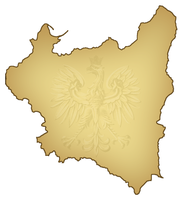 1st Alternate Map of Poland by Magnificate
