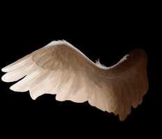Wing by DemonicDaveStrider