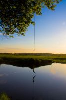 Tired Old Rope Swing by dloveridge514