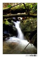 Strictland Ave Falls 1 by alexwise