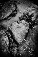 Heart of stone by andaria