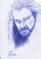 Thorin Oakenshield by Karolina5n